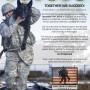 20121110_Armed-Forces_V1_redux